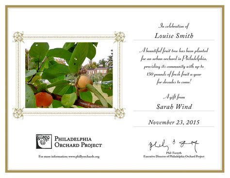 tree gift card template orchard philadelphia orchard project