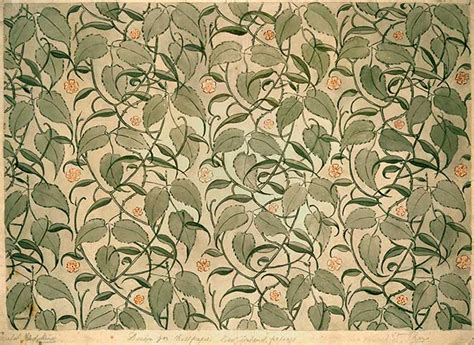 Wallpaper Designs New Zealand | wallpaper design from the new zealand industrial
