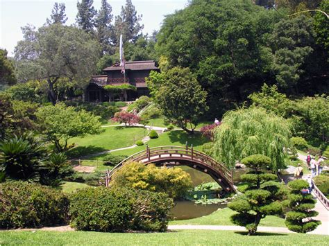 huntington japanese garden a photo from california west