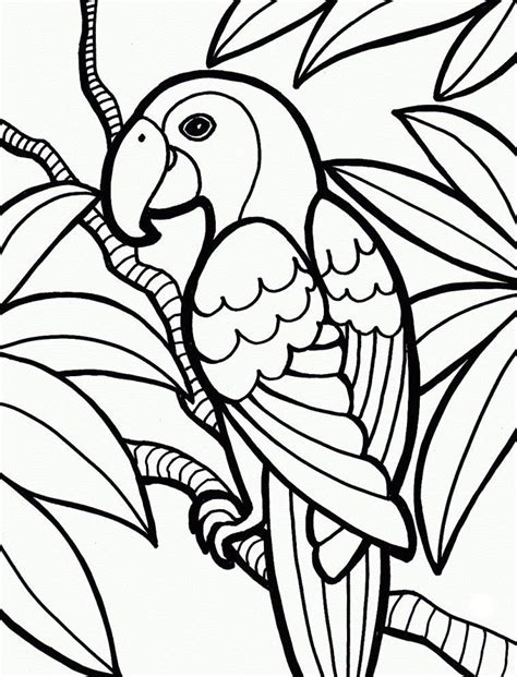 jungle coloring pages animal coloring pages jungle