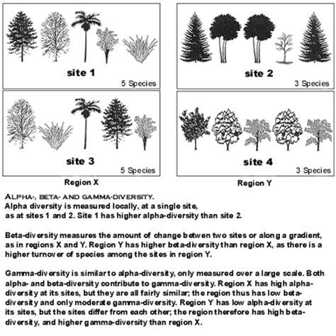 Landscape Diversity Definition Landscape Geochemistry Definition 28 Images Water And