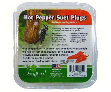 songbird suet plugs hot pepper birdfeeders plus