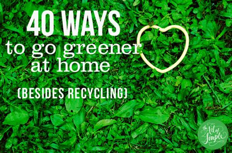 ways to go green at home ways greener home besides just recycling bestofhouse net