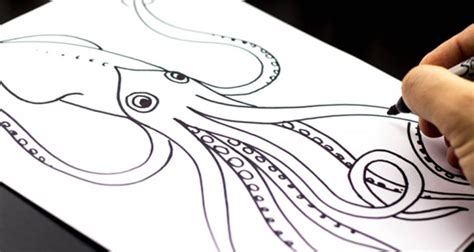 Drawing Websites by Coloring Pages Printable Drawing Websites For Squid
