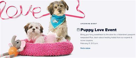 petsmart puppy event petsmart puppy event on saturday february 11th make a pawprint keepsake