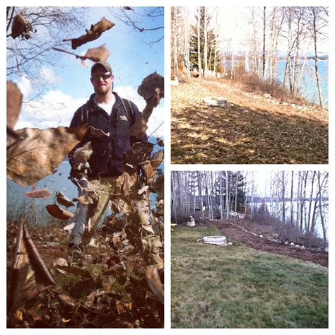 backyard cleanup services yard cleanup