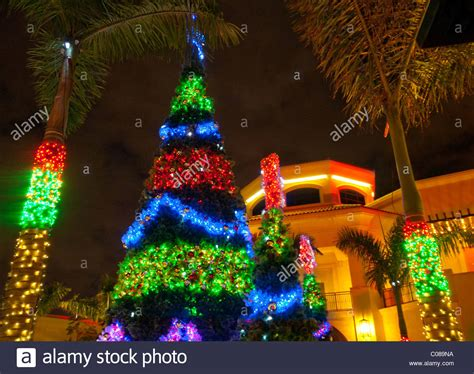 flordia xmas trees tree and lighting and decorations at the at stock photo royalty free image