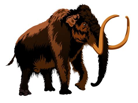 mammoth images mammoth clipart clipart panda free clipart images