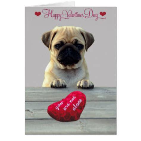 happy pug day pug gifts on zazzle