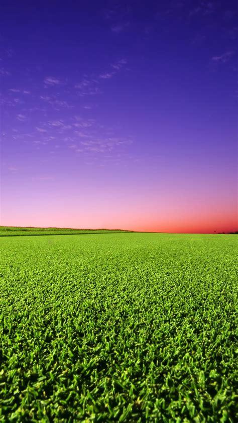 wallpaper golf  green grass sunset hd nature