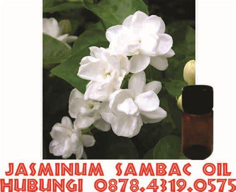 Minyak Atsiri Mawar minyak atsiri bunga melati hub 0878 4319 0575 jual