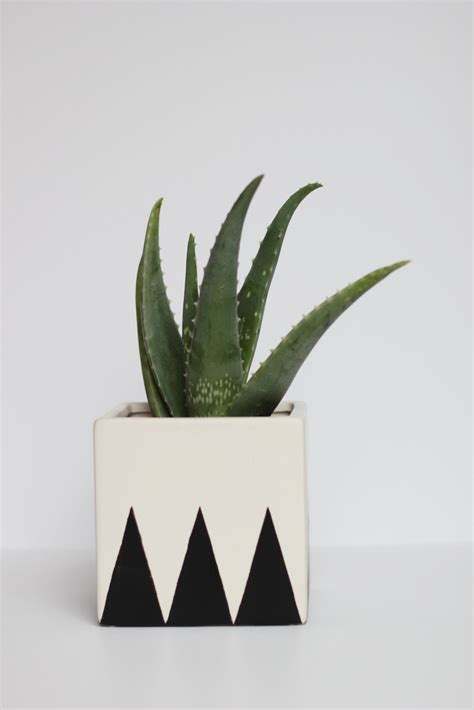 25 Creative Diy Planter Projects Black And White Planters