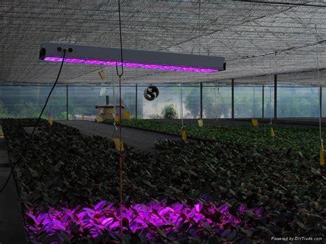 greenhouse led grow lights 900w apollo 20 led grow light for greenhouse kt apollo