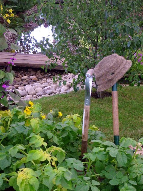 Hton Court Flower Show Picture Gallery 3 Vegetable Gardening Tools