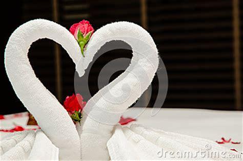 Swan Towel Origami - swan towel origami stock image image 35011241