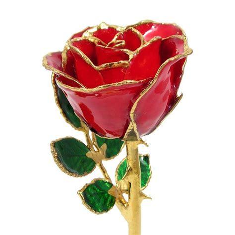 """24k Gold Trimmed Rose: 8"""" Red Rose: Love Is A Rose"""