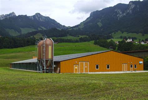 capannoni per polli capannoni ad uso avicolo miglioranza sandrigo vicenza