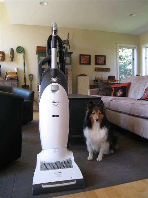 dog house vacuum cleaner cat and dog vacuum cleaner homedesignfordogs