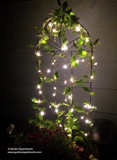 Adding A Little Magic To My Garden Using Fairy Lights Lights In