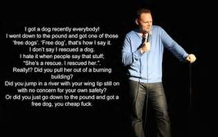 bill burr rescue dogs 17 best ideas about bill burr on stupid stupid quotes