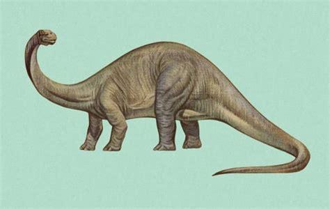 film dinosaurus yang baik ada dinosaurus yang muncul di hasil usg wanita hamil