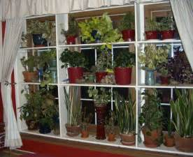 window plant shelves greenhouse indoor garden pinterest gardens bedroom windows and window