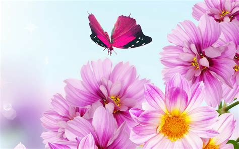 wallpaper with flowers pink flowers wallpapers wallpapers screensavers