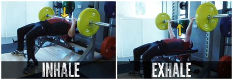 breathing bench press just breathe easy muckerfitness