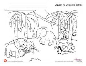 jungle animals worksheets colouring pages 3