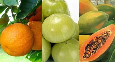 foods we should eat during winter season eyogaguru com