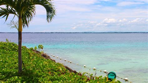 cheap flights to cebu philippines expedia