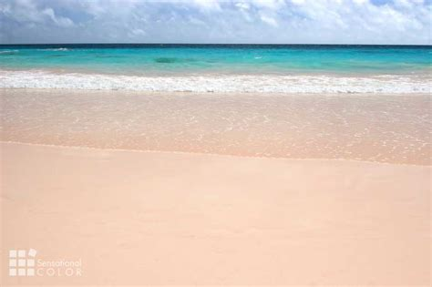 bermuda colors pink sand turquoise water pastel buildings