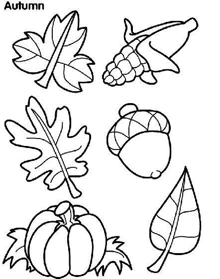 free coloring pages leaf autumn leaves coloring page crayola com