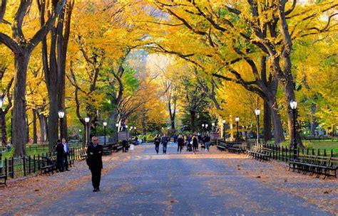 apartamentos turisticos new york central park em york york
