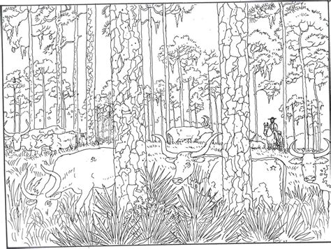 secret garden coloring book nz coloring pages on coloring pages scooby doo