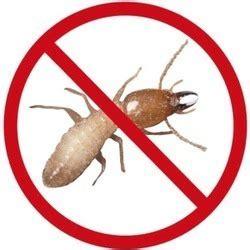 termite pest control service  india