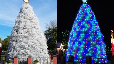 7 of the world s most awesome alternative christmas trees