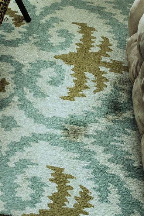 How To Clean Area Rugs Area Rug Cleaning Safe And Rug Cleaning Ideas
