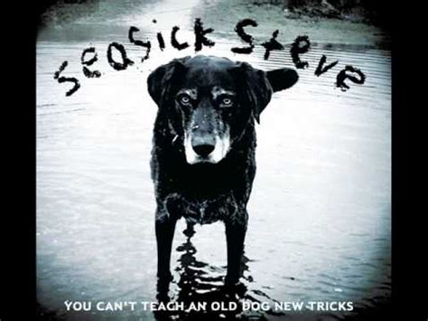 back in the dog house seasick steve back in the doghouse you can t teach an old dog new tricks youtube