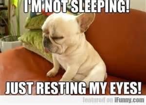 Sleepy Meme - i m not sleeping just resting my eyes ifunny com