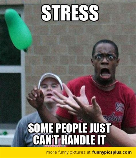 Stress Meme - funny stressed out quotes quotesgram