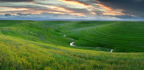 green green grass of home dunnigan california