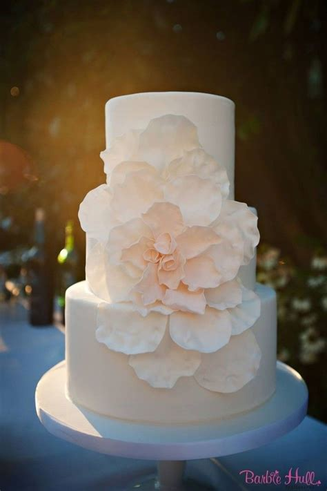 Simple Wedding Pictures by 25 Best Ideas About Wedding Cakes On