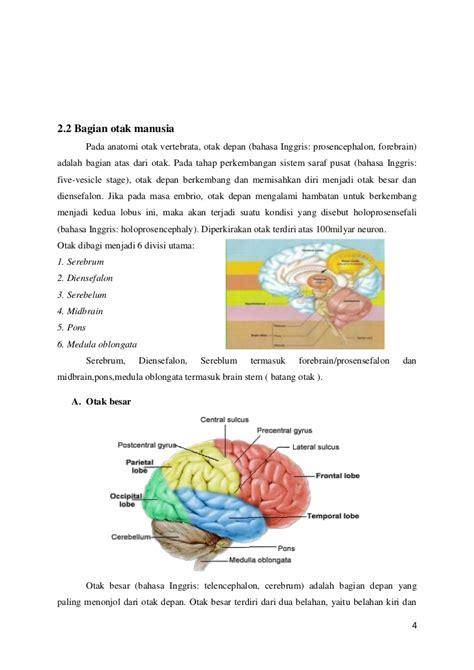 Bahasa Inggris Sistem 52m Volume 2 Oleh Herpinus Simanjuntak 84234966 makalah biologi dasar mengenai otak 1
