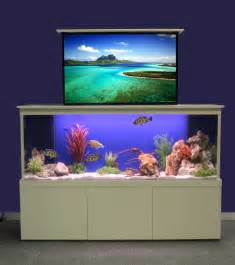 home fish tanks home cinema fresh design