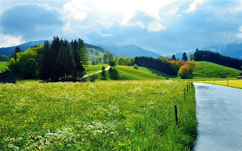 Bonia Mata Black picture nature sky roads meadow scenery grass trees
