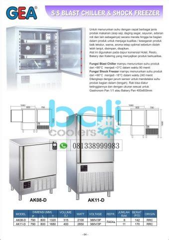 Blast Freezer Gea kitchen refrigeration bali coolers gea getra rsa