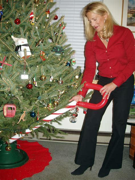 christmas tree watering device idiot toys tech news for the bored