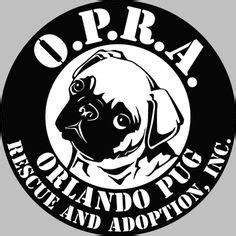 orlando pug rescue ikea vaulting active modern posts and horses