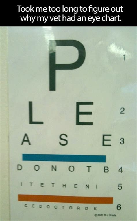 eye done by bookie md vet s eye chart do not bite the doctor ok